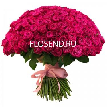 101 малиновая роза